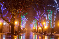 Odessa in the fog. Christmas. Royalty Free Stock Photo