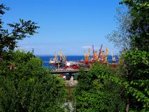 Odessa port in green. Black sea ship port in Odessa, Ukraine. From the elevated waterfront Royalty Free Stock Image