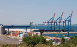 Odessa port. In Ukraine. Summer Royalty Free Stock Photography