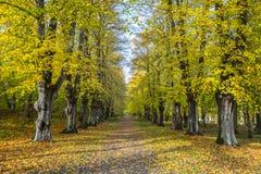 Odessa Ukraina, Black Sea Royaltyfri Bild