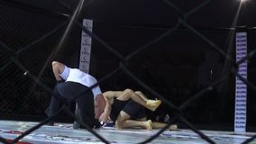 Odessa, Ukraine - 13 December 2014: Extreme Sport mixed martial arts tournament  Iron Fist 2 competition boxing karate judo stock video footage