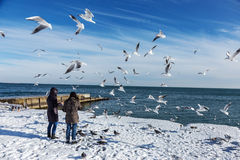 Winter beach kiev - 4 9