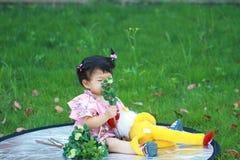 Odeur innocente mignonne de bébé la fleur sur la pelouse Photographie stock libre de droits
