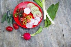 Odgórny strzał, zakończenie w górę kolorowej młodej wiosny świeżo zbiera, organicznie, crunchy, soczyści świezi warzywa na czerwi zdjęcie royalty free