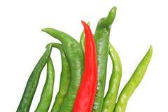 Odgórnego widoku chili pieprz odizolowywający na białym tle obraz royalty free