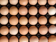 Odgórnego widoku grupa jajko obrazy stock