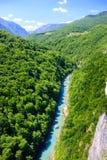 odgórnego widoku halna rzeka z kryształem - jasna woda wśród zielonych gór Fotografia Royalty Free