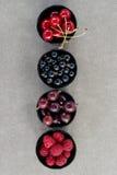 Odgórnego widoku jagody: malinki, wiśnia, agrest, rodzynek w cztery pucharach Zdjęcie Stock