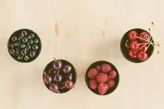 Odgórnego widoku jagody: malinki, wiśnia, agrest, rodzynek w fo Obraz Royalty Free