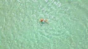 Odgórnego widoku kobiety dopłynięcie w krysztale - jasna woda morska Kobiety kąpanie w turkusowej wodzie morskiej na raj plaży Od zbiory wideo