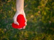 Odgórnego widoku młodej kobiety ręki mienia czerwieni serce Szczęśliwy, miłość, walentynki pojęcie obraz stock