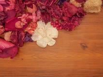 Odgórnego widoku menchie i czerwień suszący kwiaty na brown drewnianym tle Zdjęcia Stock
