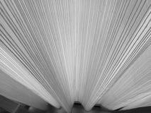 Odgórnego widoku obrazek zasłona w czarny i biały kolorze Fotografia Royalty Free