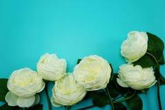Odgórnego widoku przestrzeni kopia z sztuczną białą peonią kwitnie bukiet zdjęcie royalty free