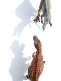 Odgórnego widoku spinosaurus z cieniem i tyrannosaurus Obrazy Stock