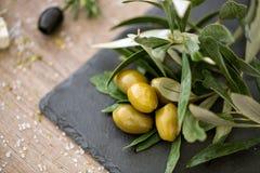 Odgórnego widoku zielone oliwki na naturalnym drzewie oliwnym opuszczają Fotografia Royalty Free
