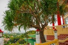 odgórny miasto widok Taoistyczna świątynia w Cebu, Filipiny zdjęcia stock