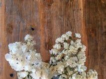 Odgórny widok śliczni mali biali kwiaty w wazie na drewnianym stole dla tła fotografia stock