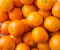 Odgórny widok świeże mandarynki Dojrzałe i smakowite mandarynki clementines obrazy royalty free