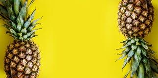 Odgórny widok ananas granica na jaskrawym żółtym tle Żywy pastelowy układ z ananas ramą z góry obraz royalty free