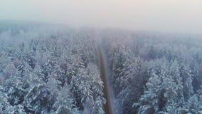 Odgórny widok bezpłatna wiejska autostrada w zima lesie zbiory