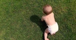 Odgórny widok chłopiec czołganie na trawie zdjęcie wideo