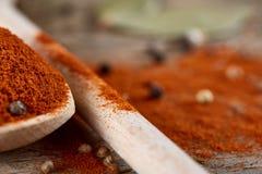 Odgórny widok drewniane łyżki pełno paprica i czarny pieprz na drewnianym lufowym tle, selekcyjna ostrość Obraz Stock