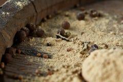 Odgórny widok drewniane łyżki pełno paprica i czarny pieprz na drewnianym lufowym tle, selekcyjna ostrość Obrazy Royalty Free