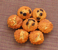 Odgórny widok handmade czekoladowi muffins Zdjęcia Royalty Free