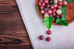 Odgórny widok kolorowi różowi agresty w łozinowym koszu na szarej tkaninie na drewnianym tle i kosmos kopii Obrazy Stock