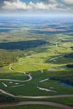Odgórny widok lasowa rzeka Zdjęcia Stock