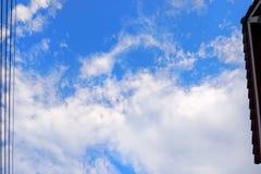 Odgórny widok lotosowy liść z wodą i skała jako tło Zdjęcie Stock