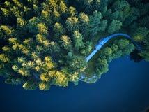 Odgórny widok mały jezioro wokoło zieleni drzewa i z małą ulicą lub ścieżką Obraz Stock