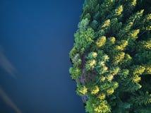 Odgórny widok mały jezioro wokoło zieleni drzewa i z małą ulicą lub ścieżką Obrazy Stock