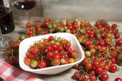 Odgórny widok Mini pomidory zdjęcie royalty free
