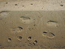 Odgórny widok mokry piasek na plaży z śladami Obraz Royalty Free