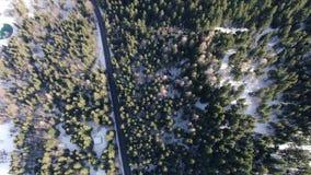 Odgórny widok na góry wzgórzu z lasem w śniegu i długą drogą, 4k zbiory wideo