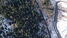Odgórny widok na lesie z udziałami śnieg blisko długiej drogi, 4k zbiory wideo