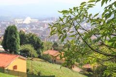 Odgórny widok od góry przez gałąź drzewa, zdjęcia royalty free