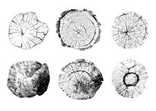 Odgórny widok odosobnione drzewnych fiszorków ilustracje royalty ilustracja