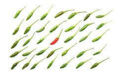 Odgórny widok odosobniony zielony świeży Tajlandzki chili układał w staranni rzędy obok czerwony chili w środku na białym tle Zdjęcie Royalty Free