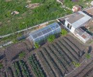 Odgórny widok ogród z szklarnią robić polycarbonate Fotografia Royalty Free