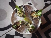 Odgórny widok ostrygi na talerzu zdjęcia stock