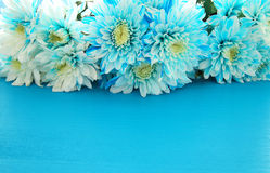 Odgórny widok piękny i delikatny błękitny kwiatu przygotowania Fotografia Stock