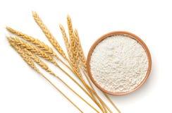 Odgórny widok pszeniczna mąka i ucho obrazy stock