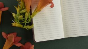Odgórny widok pusty notepaper z świeżym okwitnięciem kwitnie zbiory wideo