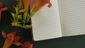 Odgórny widok pusty notepaper z świeżym okwitnięciem kwitnie zdjęcie wideo