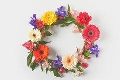 odgórny widok robić piękni kolorowi kwiaty i zieleń kwiecisty wianek opuszcza na popielatym Fotografia Stock