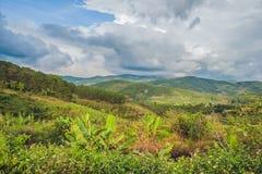 Odgórny widok rolnictwo tarasował ryż i budę na wzgórzu Veitnam Obrazy Stock