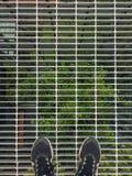 Odg?rny widok selfie stopa kt?ra jest ubranym sport?w buty na stalowej dra?ni?cej pod?odze z zielonym drzewnym t?em zdjęcia royalty free